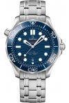 Omega Seamaster Diver 300M 210.30.42.20.03.001